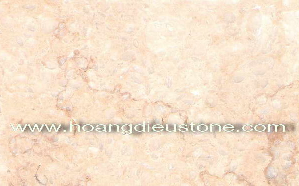 Suny beige           04MPLEG1